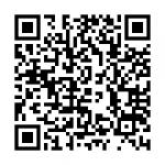 QR_368554